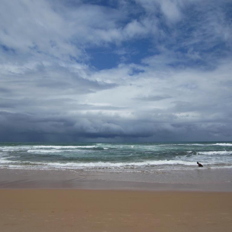 Strand in der Nähe von Salvador do Bahia