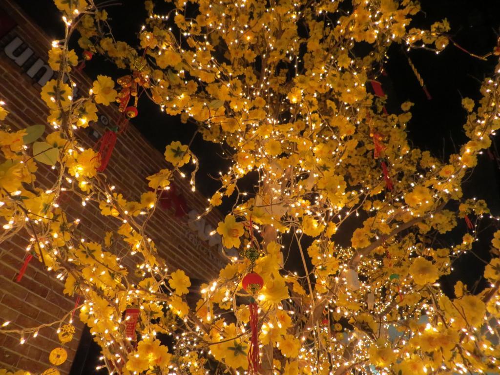 Dekorierte Bäume an den TET Festivitäten