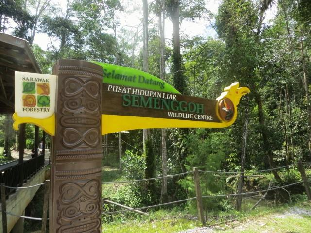 Semenggoh Wildlife Centre in Kuching, Borneo