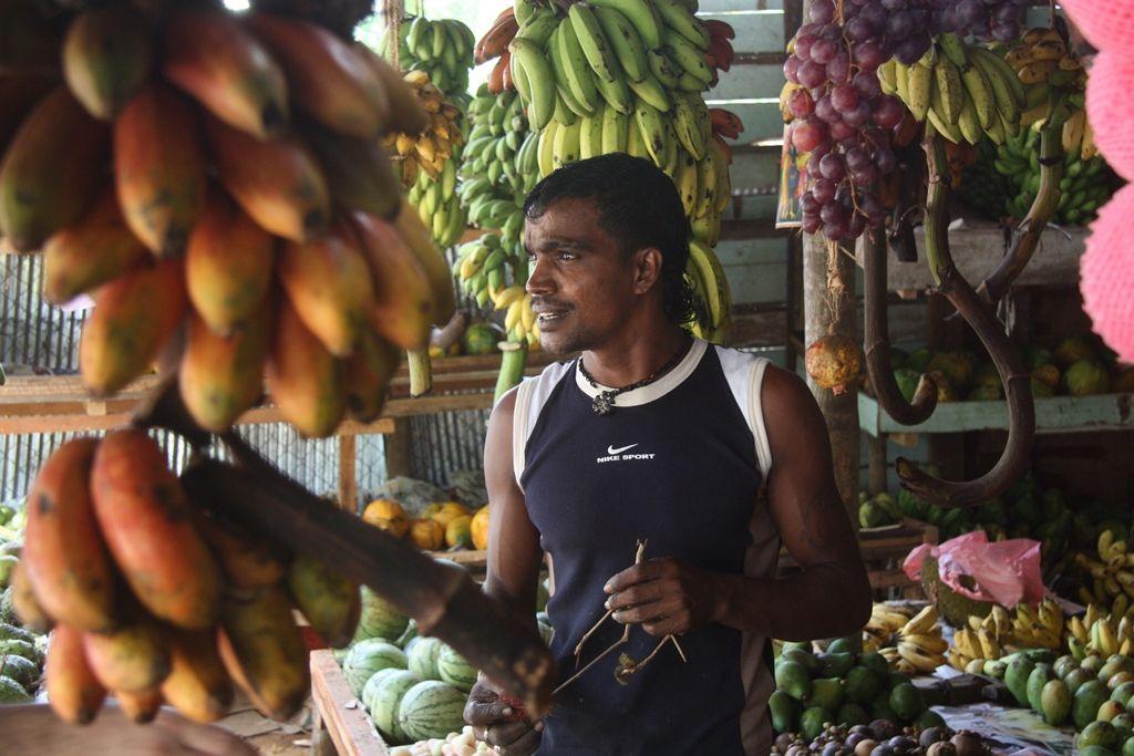 Sri Lanka - viele unterschiedliche Bananensorten gibts zu probieren