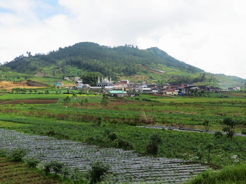 Dieng - ein kleines Dorf im Hochland Javas