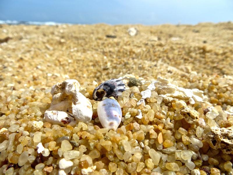 Strand von Mirissa.