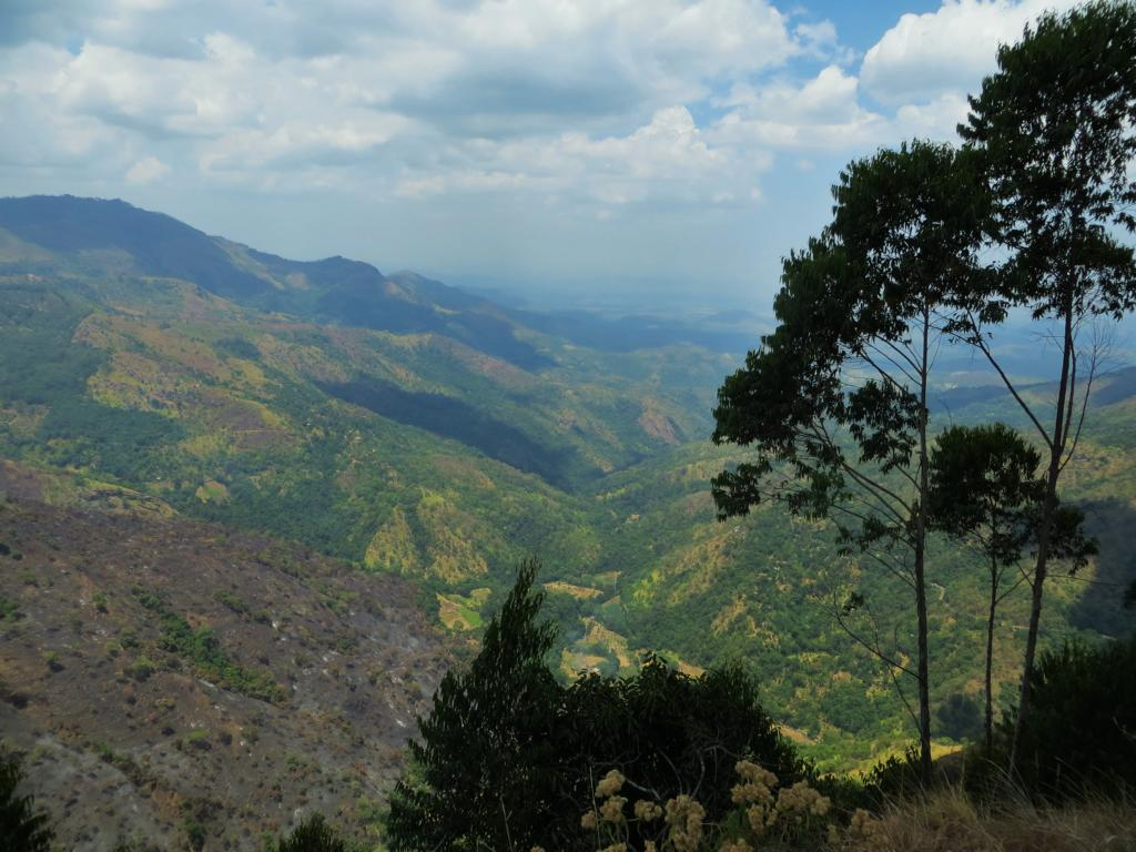 Wunderschöner Ausblick: Das Ella Gap im Hochland von Sri Lanka