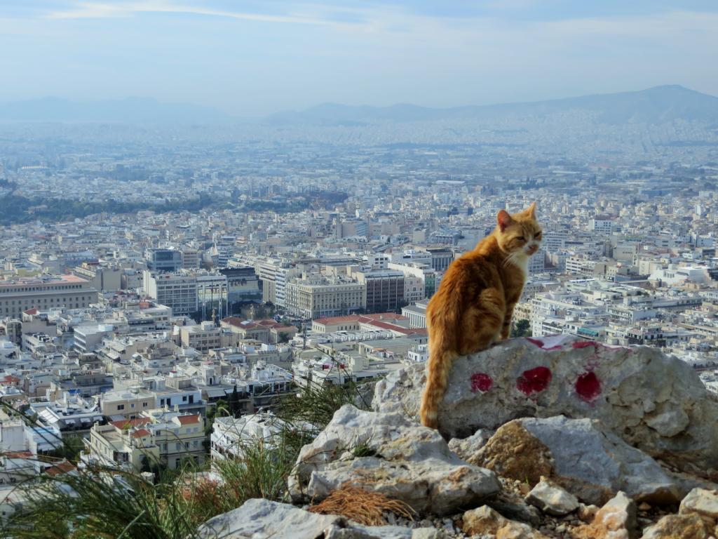 Aussicht vom Lycabettus in Athen