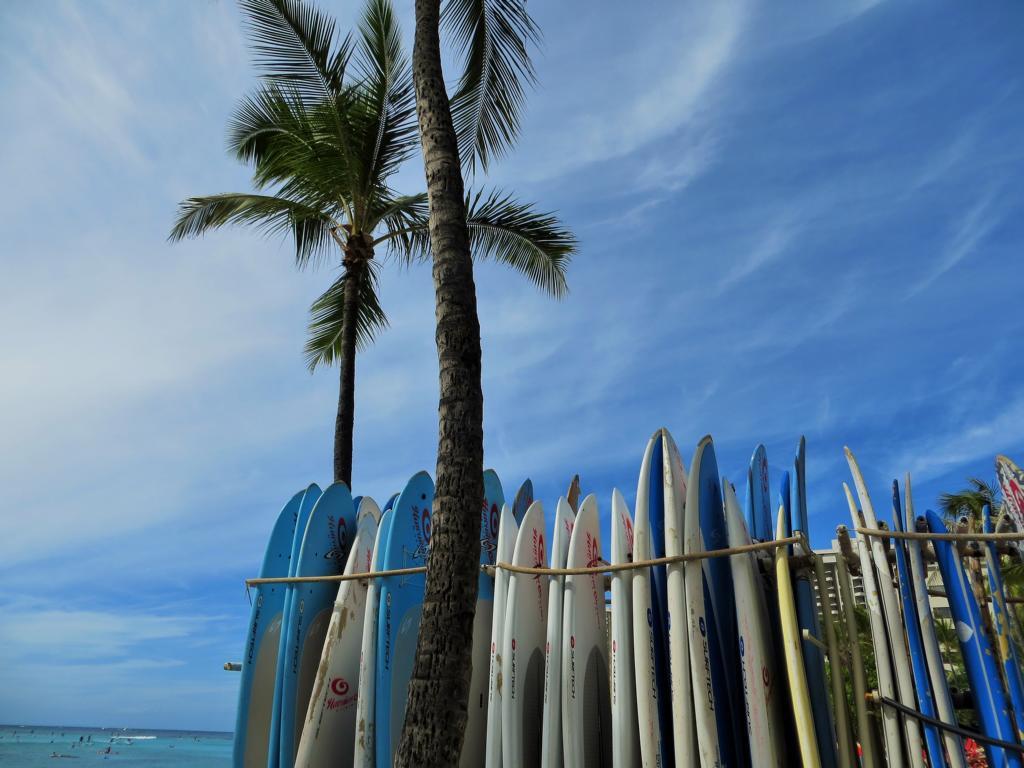 Sufing Waikiki!