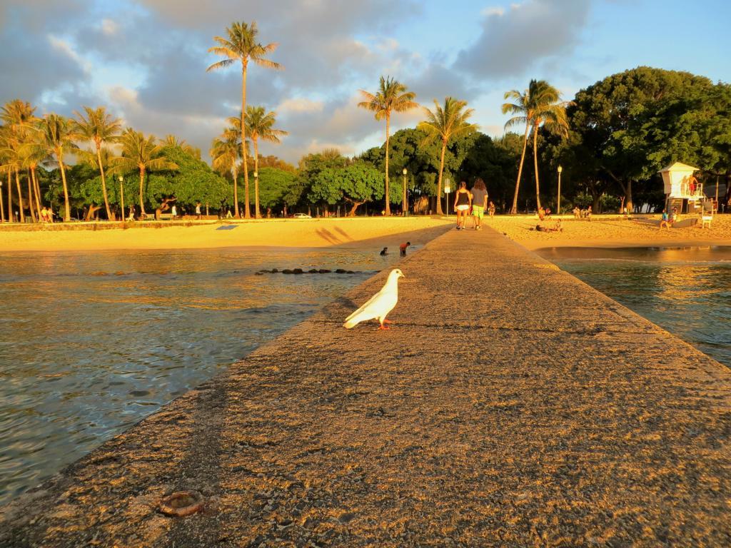 Die schönsten Sonnenuntergänge gibt es auf Hawaii