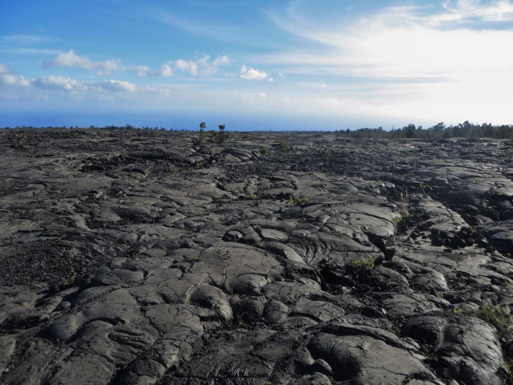 Erstarrte Lava auf der Chain of Crater Road auf Big Island