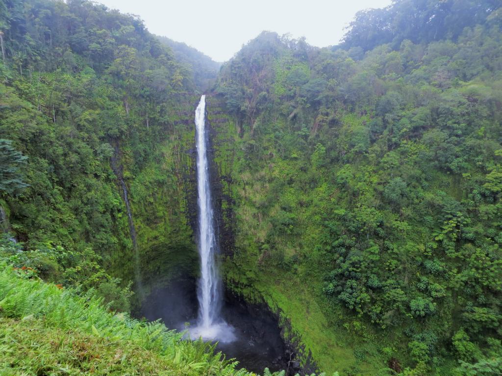 Die Akaka Wasserfälle auf dem Weg nach Big Islands Norden