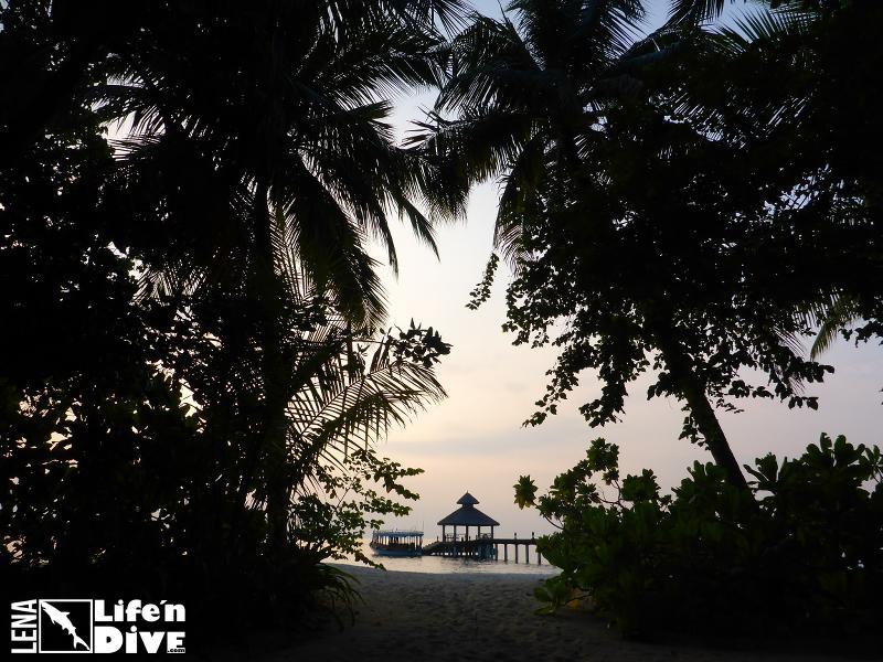 So spektakulär gestaltet sich die Ankunft auf den Malediven.