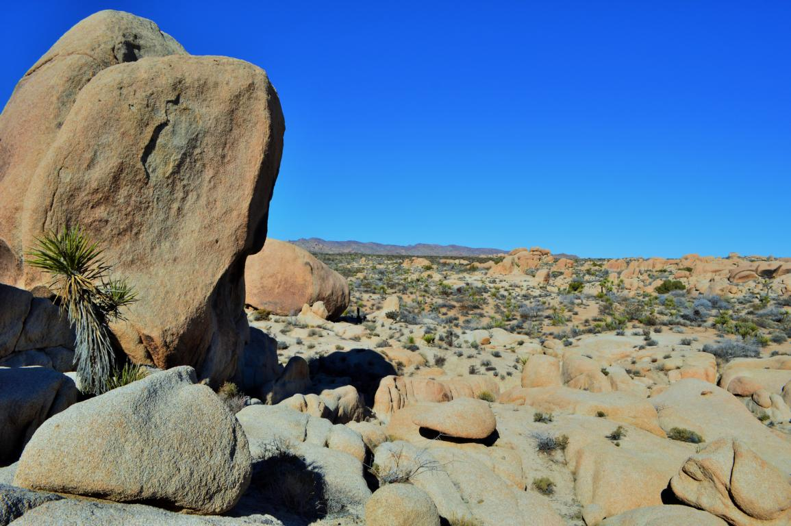 Die Weiten des Joshua Tree Nationalparks in Kalifornien.
