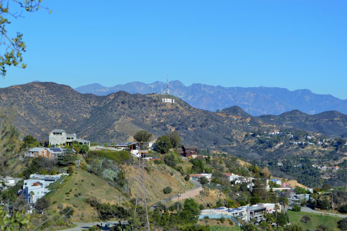 Blick auf die Hollywood Hills und die vielen Villen, die dort zerstreut rumstehen.