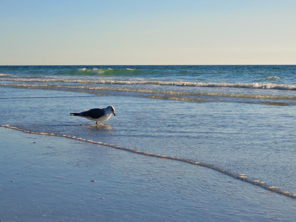 ...manchmal muss man sich einfach alleine in unbekannte Gewässer vorwagen.