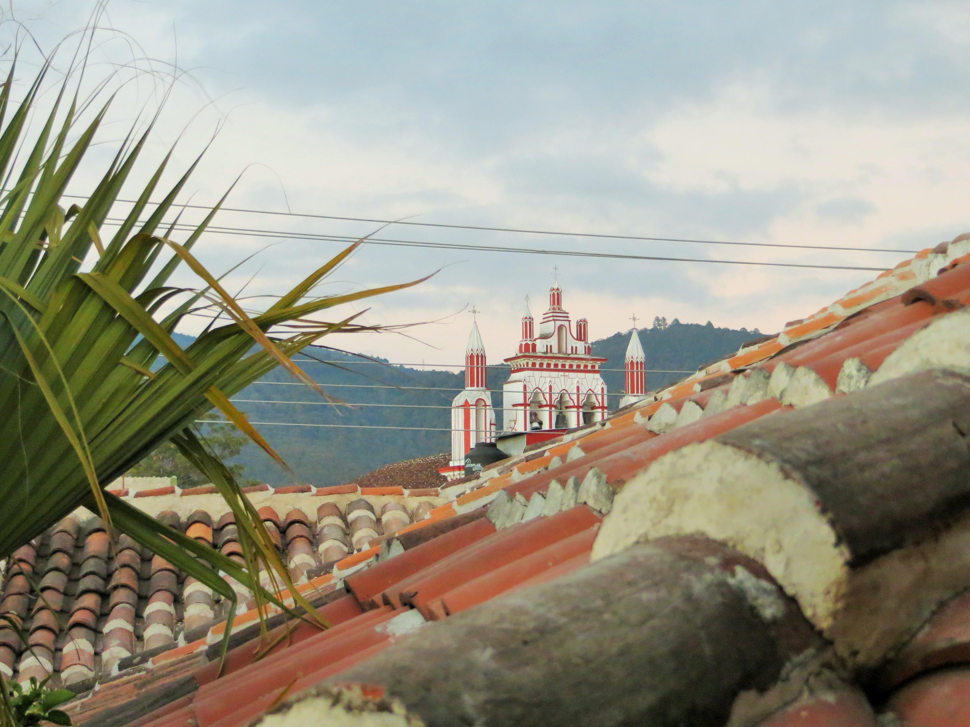 Eine tolle Aussicht im Rosscos Backpackers gibts auf der Dachterrasse.