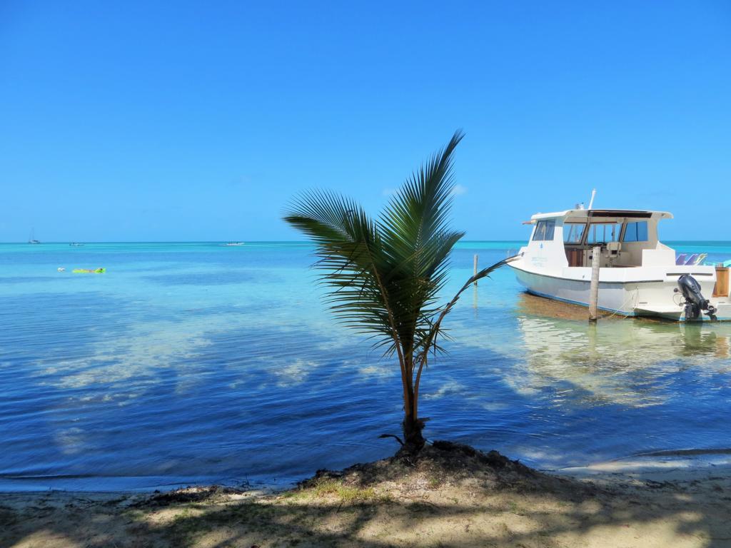 Inselleben auf Caye Caulker in Belize.