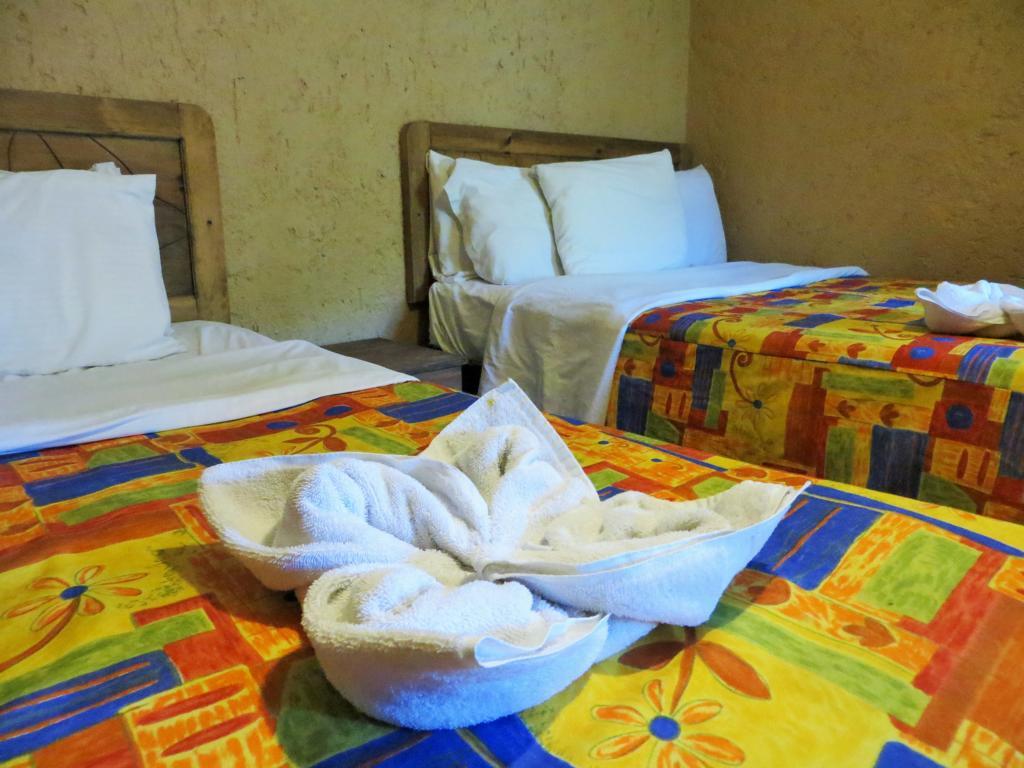 Im Rosscos Backpackers gibt es Einzel- und auch Mehrbettzimmer.