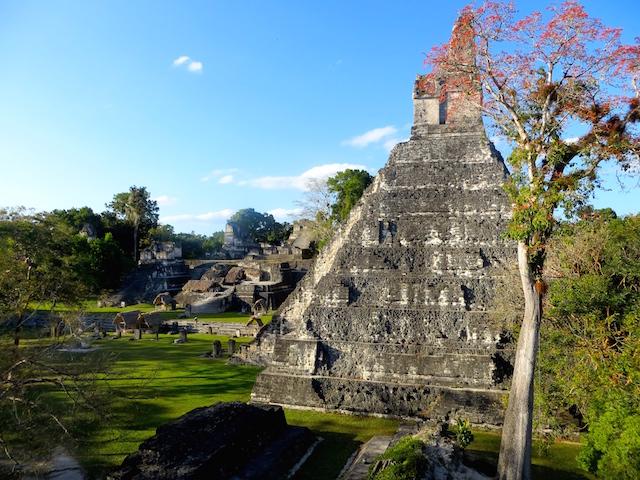 Am Hauptplatz in Tikal.