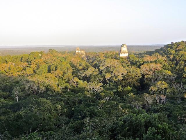 Sonnenuntergang in Tikal, einfach magisch.