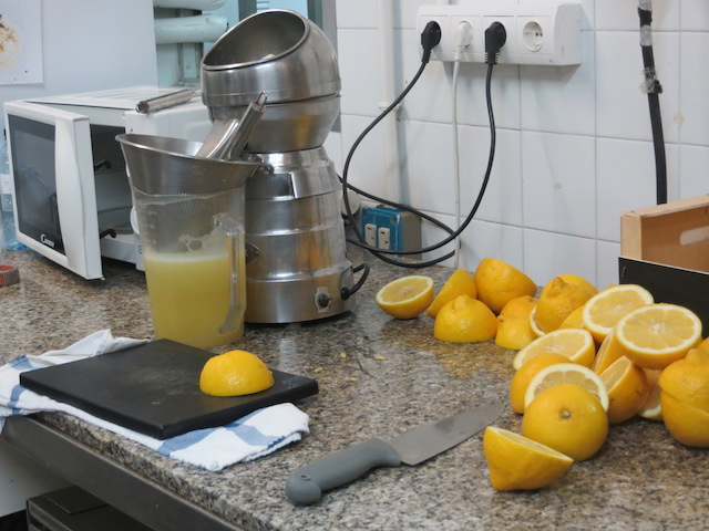 """In """"La Ibense"""" wird alles von Hand gemacht, auch kiloweise Zitronen geschnitten und gepresst."""