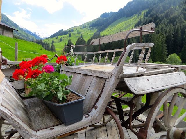 Klischeebild? Ja, aber so ist es in Tirol. Einfach herrlich!