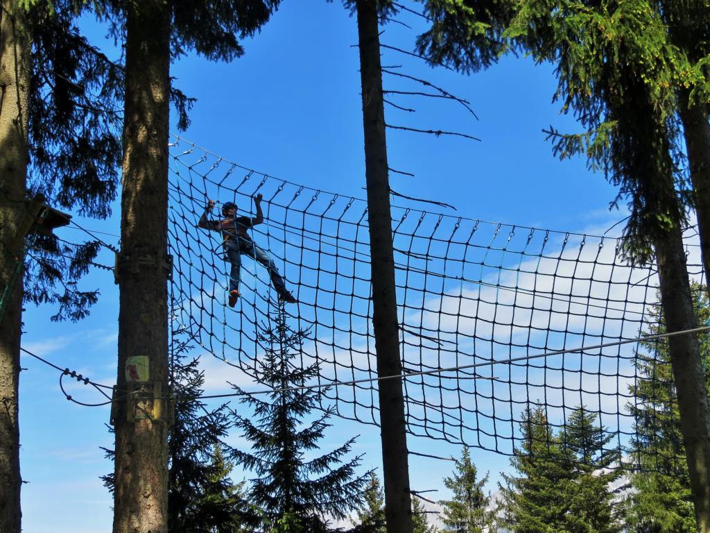 Klettern in den Tiroler Wäldern...