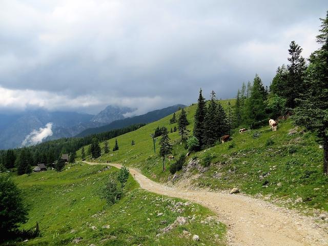 Die Alp Velika planina in Slowenien.