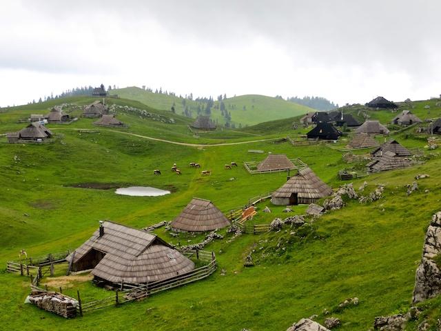 Die Hüttensiedlung der Hirten auf der Alp Velika planina.