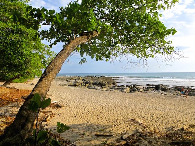 In Costa Rica ist die Natur ganz besonders vielfältig.