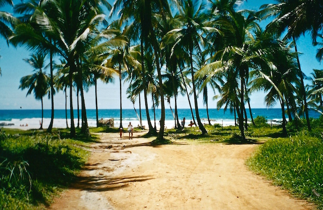 Strand in Itubera in Brasilien