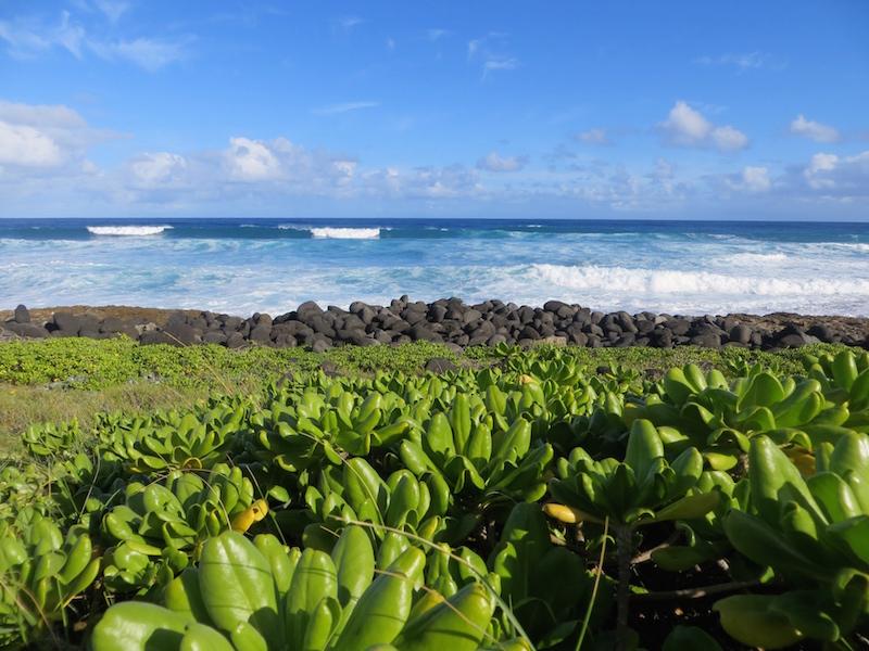 Hawaii - einfach ein Traum.