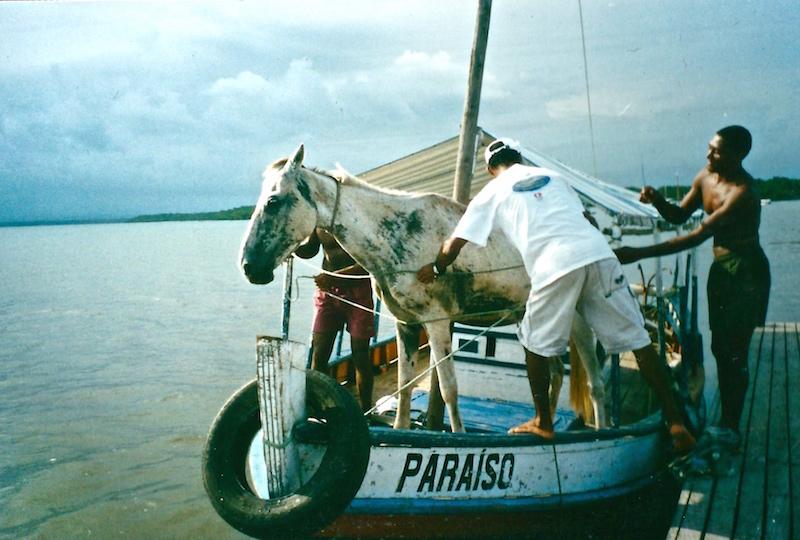 Wir verschiffen dann mal kurz ein Pferd.