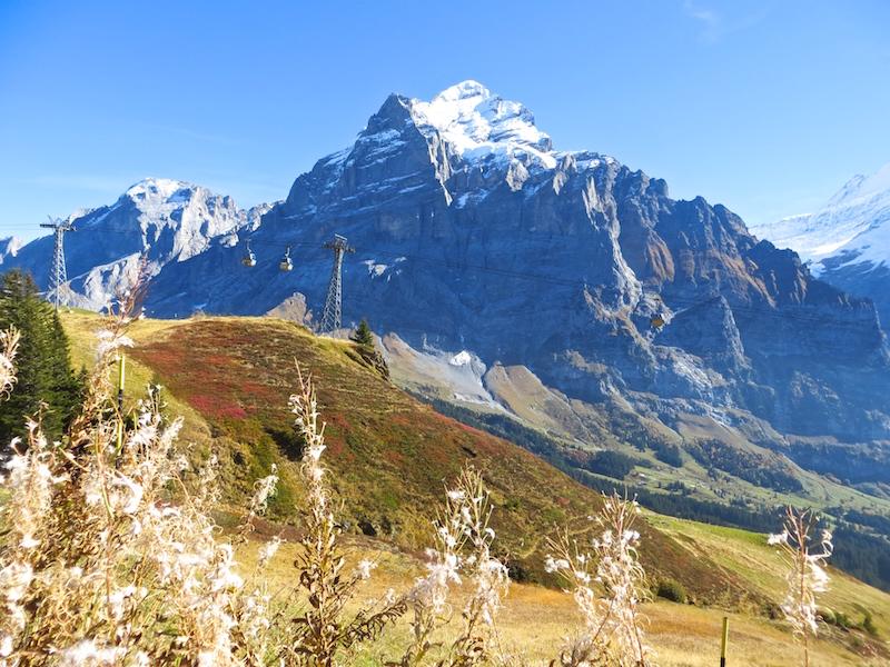 Ein spektakuläres Bergpanorama von der Grindelwald First aus.