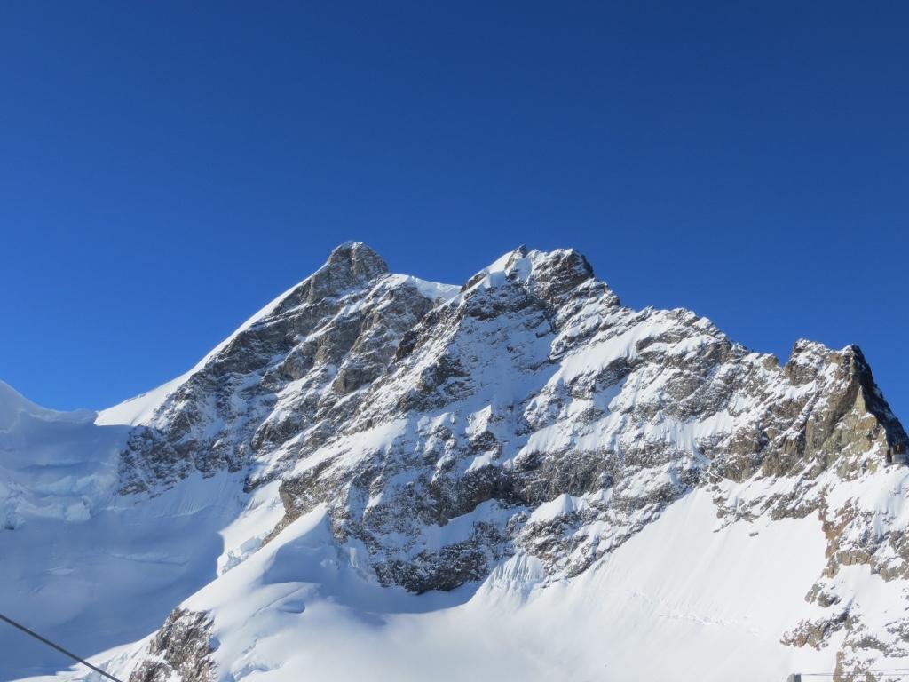 Die Bergwelt hautnah.