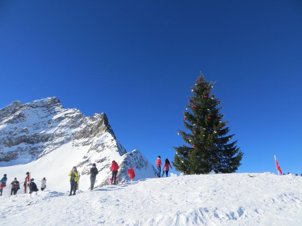 Der Weihnachtsbaum auf der Plattform des Jungfraujochs.