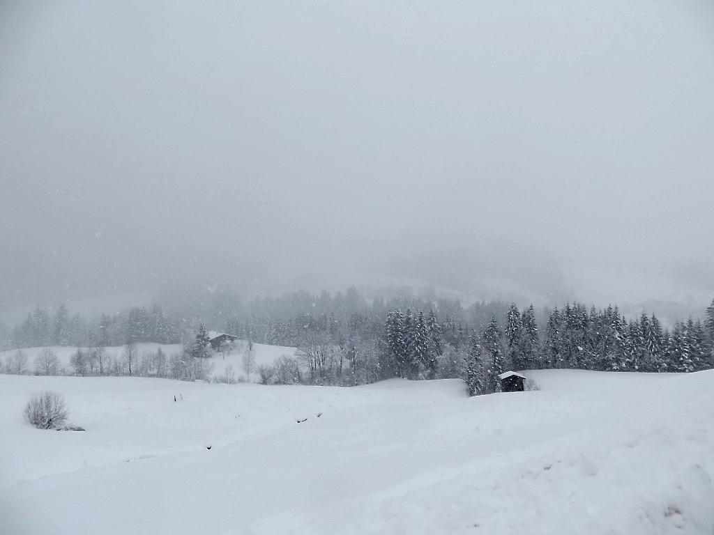Tirol bietet für das Lamatrekking bei jedem Wetter eine tolle Kulisse.