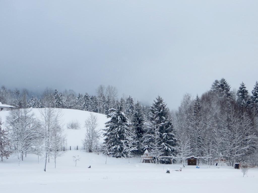 Lamatrekking in Tirol - so schön ist die Winterlandschaft.