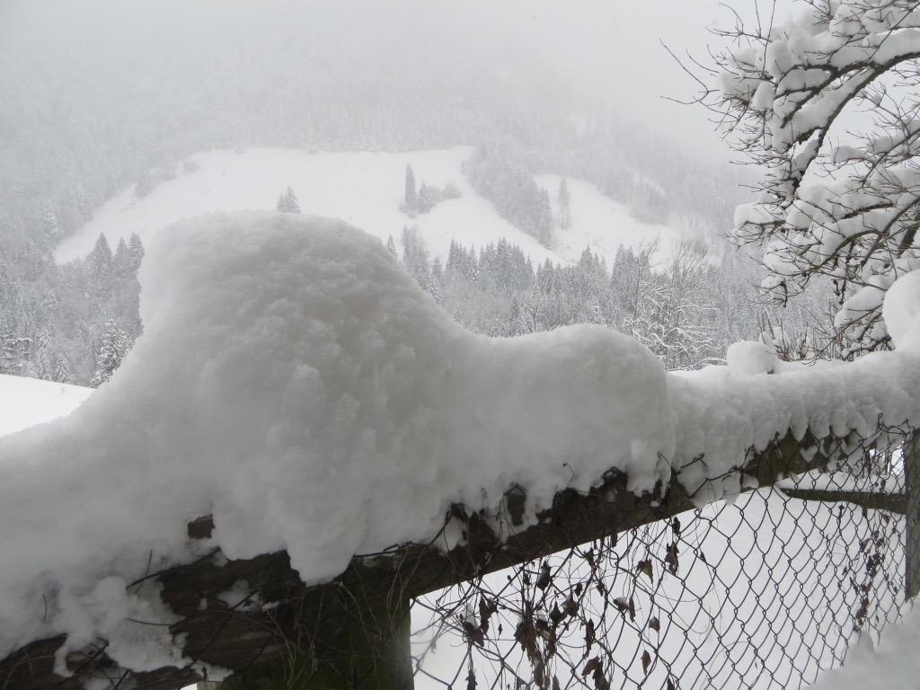 Winterwunderland in den Kitzbüheler Alpen in Tirol.