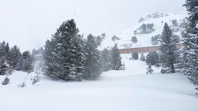 Vom Schnee umweht...