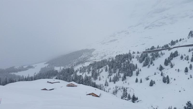 Schlittenfahren ist was vom schönsten im Winter.