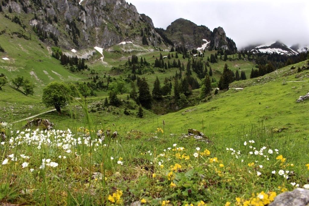 Im Breccaschlund in Fribourg Region.